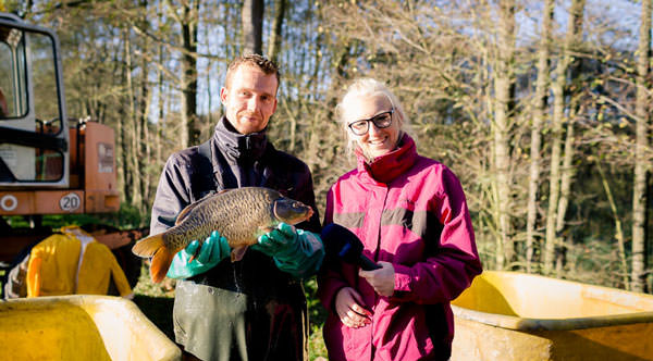 Fischzucht Beauty Carps